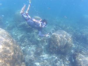 プルフンティアン島でシュノーケリング。TurtlePoint/世界一周わくわく教室