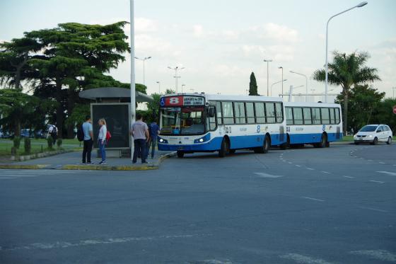 IMGP7550