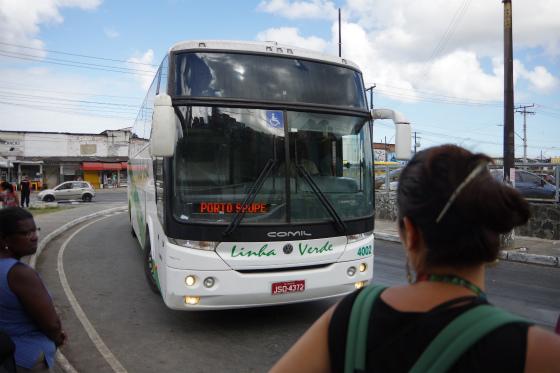 IMGP9677