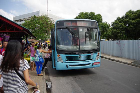IMGP0795