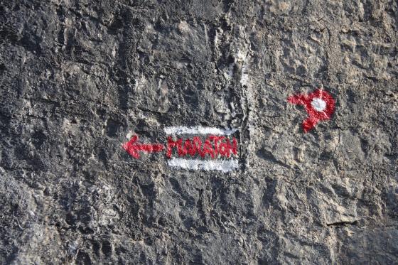 imgp1449