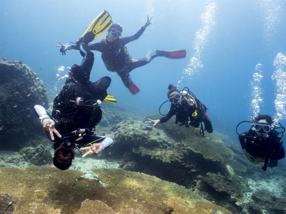 エルニドで一緒にダイビングしたメンバー
