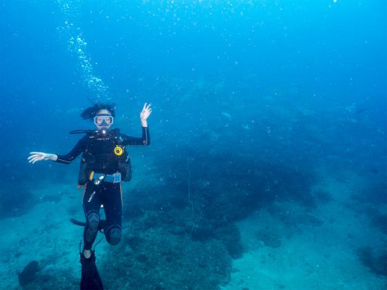 エルニドで魚群発見