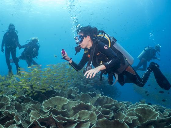 ダイビング中の写真を撮るあゆみ