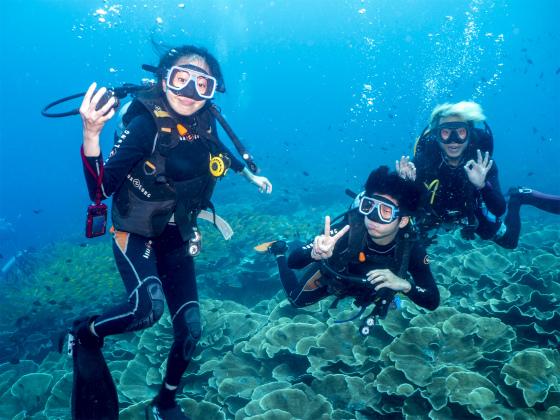 エルニドの海は最高なのに・・・