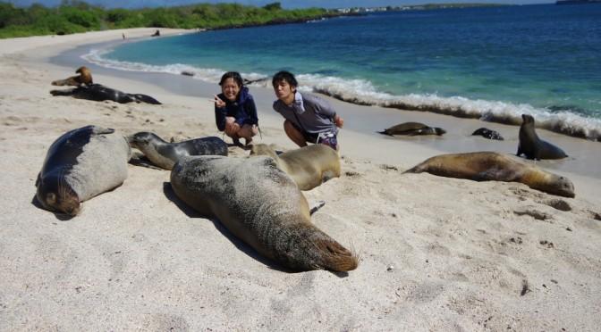 ガラパゴスでシュノーケリング〜アシカやウミガメと競泳〜