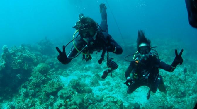フィリピンのロンブロンでダイビング!!〜ブルーホールとマクロ撮影〜
