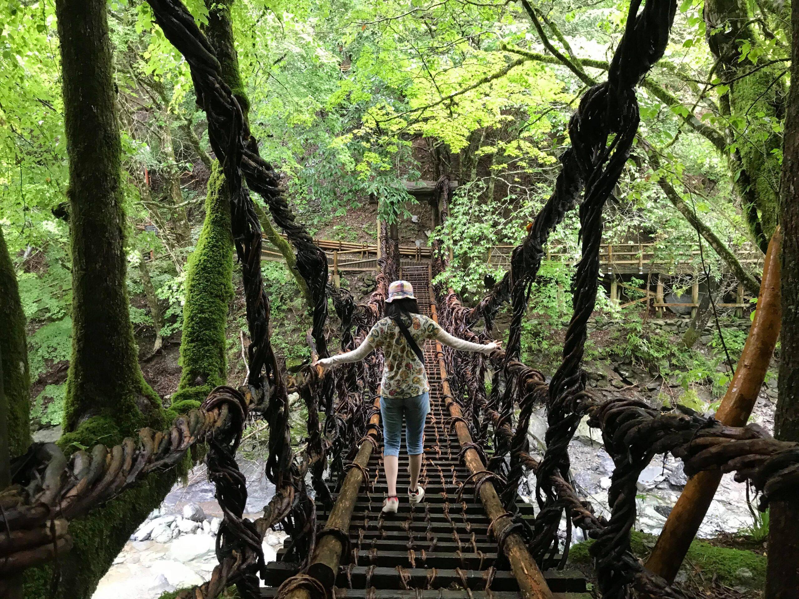 かずら橋をどんどん進むあゆみ