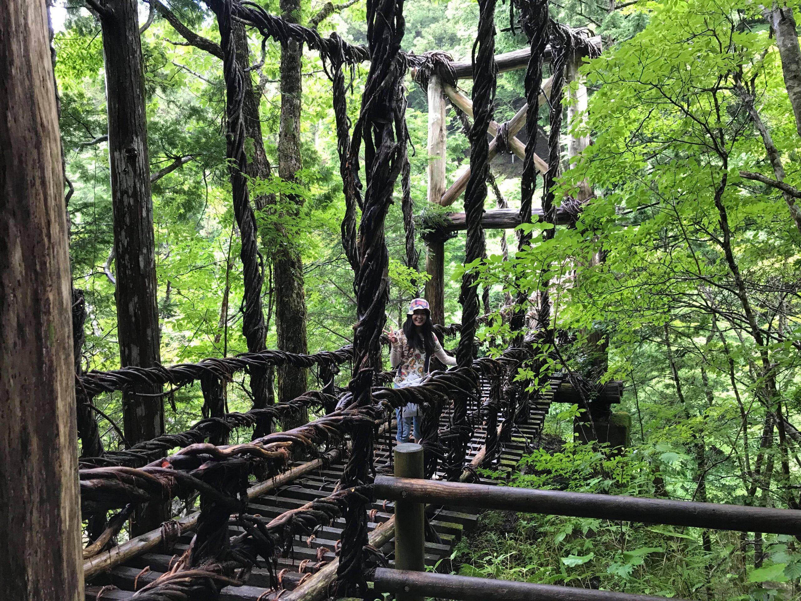 女橋を横から撮影