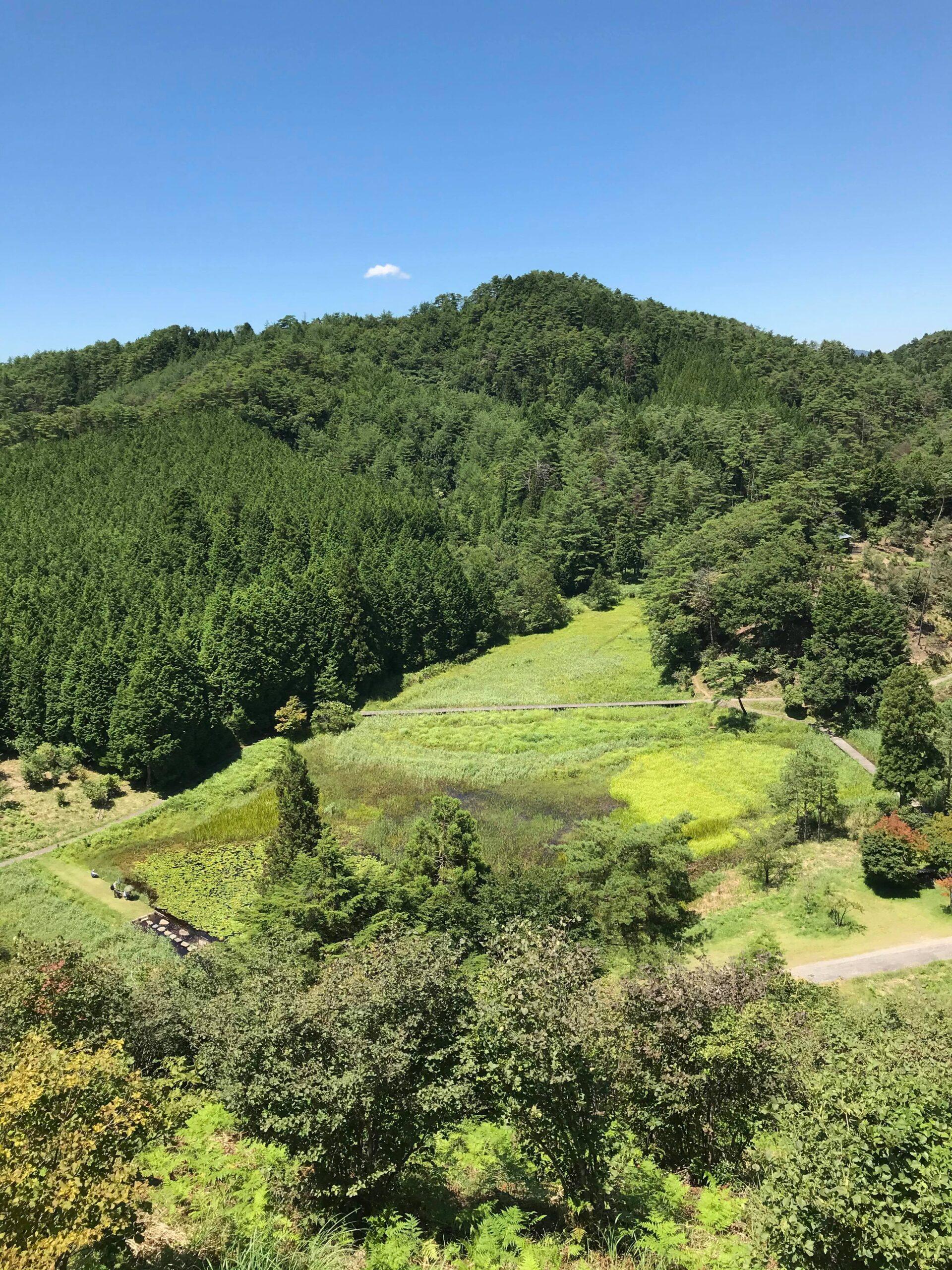 黒沢湿原を展望台から見た